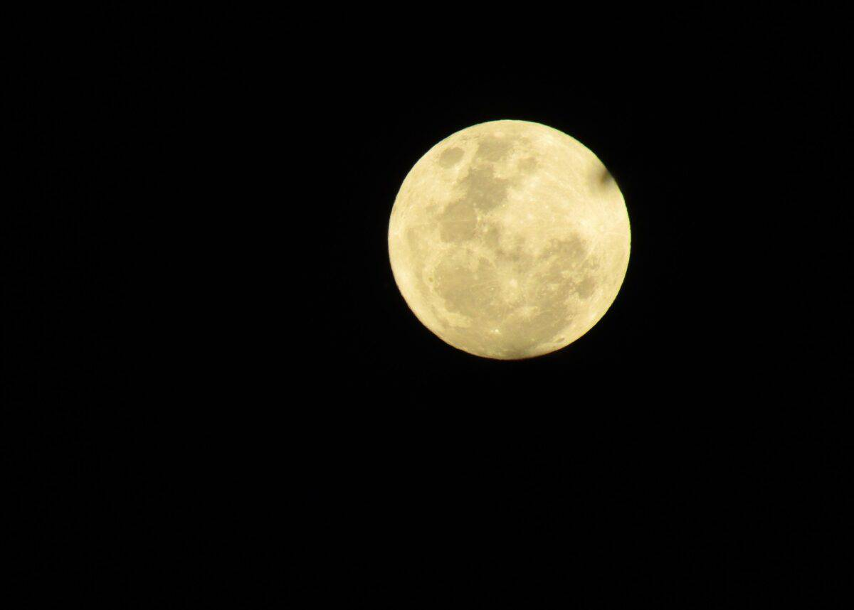 A supermoon over Queensland in 2016. Image by Robyn Denton from Pixabay