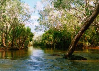 A scene in remote Arnhem Land in the Northern Territory. Photo credit: Glen Dillon via Wikipedia