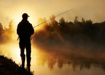 How to increase your productivity in fishing