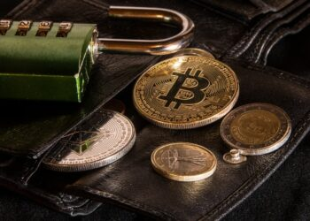 Crypto Hardware Wallet or a Software Backup – which one is for you?
