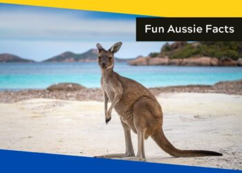10 slightly obscure fun facts about Australia
