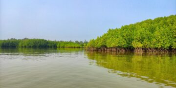 Photo by Vishwasa Navada K on Unsplash